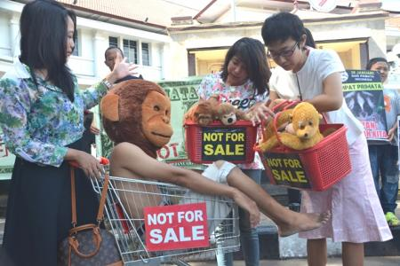 Indonesian primate day 2015