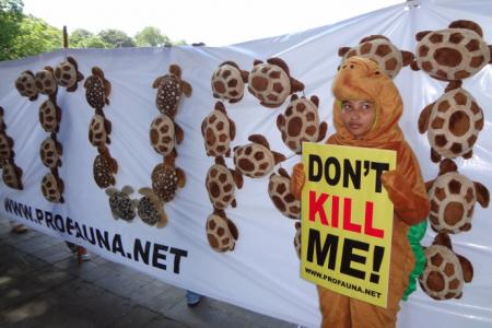 ProFauna Protests the Illegal Trade of Sea Turtle in Bali