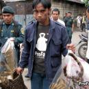 Confiscation of tiger parts in Jakarta