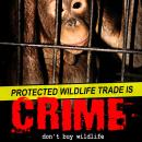 Protected Wildlife trade is crime