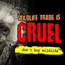 Wildlife trade is cruel