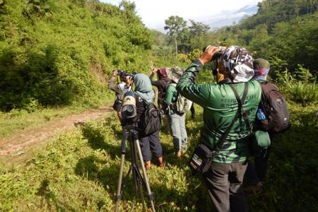 Konservasi hutan dataran rendah
