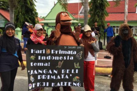 hari primata indonesia 2017