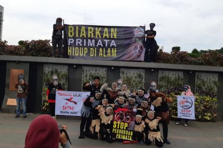 hari primata indonesia di Bandung