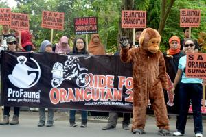 Launching of Ride for Orangutan 2013