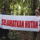 kampanye hutan PROFAUNA