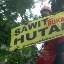 kampanye anti sawit