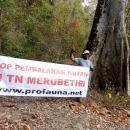 stop pembalakan di TN Merubetiri