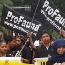ProFauna's Activists Jazzed Up Surabaya's Car Free Day