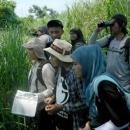 Bird watching in Ketingan Beach, Sidoarjo